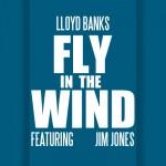 """Dope Or Nope?: Lloyd Banks Ft. Jim Jones """"Fly In The Wind"""""""