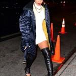 Who Wore It Better? Rihanna & Lala In $2,025 Giuseppe Zanotti Cutout Leather Knee-High Boots