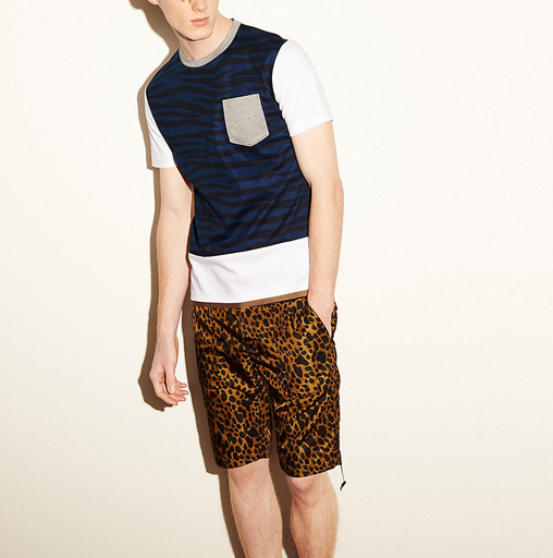 Coach Tiger Printed Tee Shirt With Band1